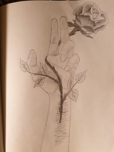Pencil drawing // scarfs - New Pin Easy Pencil Drawings, Easy Doodles Drawings, Easy Flower Drawings, Easy Disney Drawings, Pencil Drawings Of Flowers, Easy Drawings Sketches, Sad Drawings, Realistic Drawings, Colorful Drawings