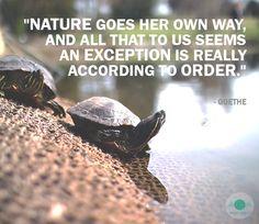 Nature's Aphorisms #119