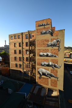 ROA Update> South Africa- Jobannesburg - I ART JHB, Ricky, Monica and the team!