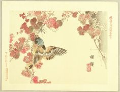 Bairei Kono - Flowers and birds picture album No.10