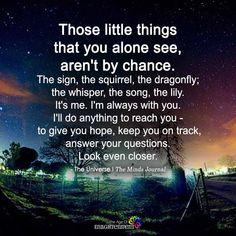 Spiritual Wisdom, Spiritual Awakening, Spiritual Growth, I Like Being Alone, Alone Quotes, Universe Quotes, Vegvisir, Yoga, Law Of Attraction