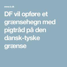 DF vil opføre et grænsehegn med pigtråd på den dansk-tyske grænse