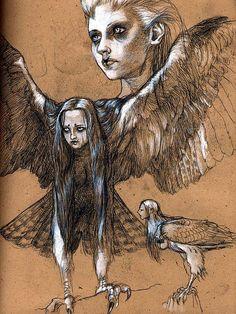 Harpy Sketches, by Kurt Komoda by Kurt Komoda, via Flickr
