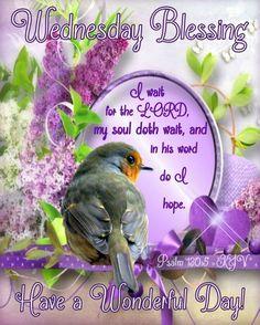 Good Morning In Spanish, Good Morning Wednesday, Good Morning Greetings, Good Morning Quotes, Psalm 130, Morning Pictures, Morning Pics, Blessed Quotes, Beautiful Rose Flowers