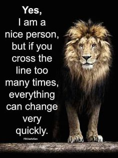 Lion Quote Ideas it sure can lion quotes inspirational quotes leo quotes Lion Quote. Here is Lion Quote Ideas for you. Lion Quote 33 best motivational lion quotes the king lion quotes. Lion Quote inspirational lion quotes w. Leo Quotes, Wolf Quotes, Attitude Quotes, Wisdom Quotes, True Quotes, Motivational Quotes, Inspirational Quotes, Lioness Quotes, Shame Quotes