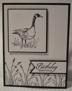 handmade card from In My Craft Room ... black and white ... Wetlands stamp set ... Canadian goose as main image ... like the balance of the three elements ... Stampin'Up!