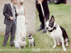 Dogs at wedding!