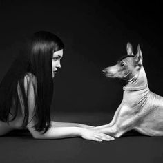 Lucie Kout is a portrait photographer based in Czech Republic. However, at times Lucie Kout is also guilty of taking marvelous photographs of dogs and their Artistic Photography, Animal Photography, Portrait Photography, Photography Ideas, Human Photography, People Photography, Hairless Dog, Portrait Studio, Photos With Dog