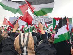 Manifestantes en París, Roma, Londres, EE.UU y en otros países rechazan decisión de Trump sobre Al Quds /También en Africa y la región de el Magreb / Palestina no está sola, dicen los turcos