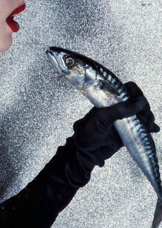 Guy Bourdin. Is that mackerel still alive?