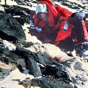 Image result for Mt. Everest Andy Harris Body