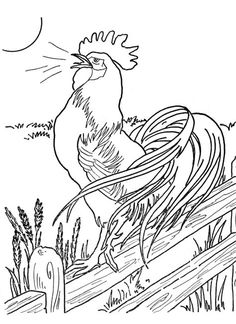 Is your kid a lover of farm animals & want to make learn about this farm animal? Then, try out these 10 exciting and free printable rooster coloring pages. Chicken Coloring Pages, Farm Animal Coloring Pages, Coloring Book Pages, Coloring Pages For Kids, Coloring Sheets, Chicken Crafts, Chicken Art, Rooster Art, Pet Chickens