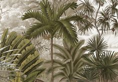 Nicobar Bronze sepia L400xH280 - 4 strips of 100 cm Flower Wallpaper, Pattern Wallpaper, Tree Wallpaper, Tropical Leaves, Tropical Plants, Lombok, Colonial Home Decor, Geometric Shapes Art, Grisaille