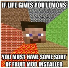 Funny minecraft things.