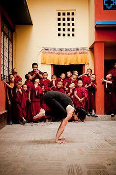 60 mejores imágenes de asana  bakasana  yoga posturas
