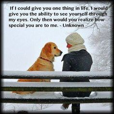 If we could only see the world through the eyes of our pets! Love this !