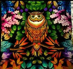 1000 Images About Owl Secret Garden Coruja Jardim Secreto On Pinterest