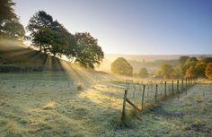 Autumn colours, West Yorkshire by Simon Higginbottom