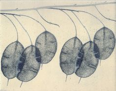 'Honesty l' Etching 42 x by Angela Brookes Nature Prints, Art Prints, Lino Prints, Alternative Photography, Plant Images, Painted Paper, Botanical Art, Chinese Art, Printmaking Ideas