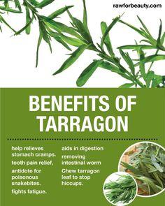 Some uses of tarragon