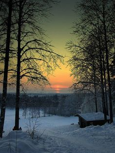 Winter Sunset, Falun, Sweden  ♥ ♥ www.paintingyouwithwords.com
