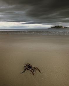 Day 2 of My posting — MikeStapleton. South Devon, Day, Beach, Water, Photography, Outdoor, Image, Gripe Water, Outdoors
