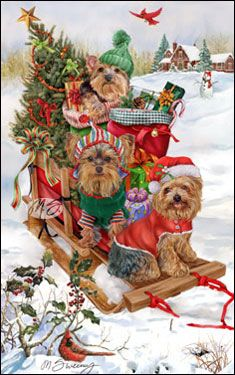 --Yorkshire Terrier - Good Tidings and Cheer