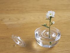 Floating Ripple Vases (by oodesign)    Fill your favorite container with water and float the vase. According to the movement of the air, the plants change their position within the container.      http://travelingcolors.tumblr.com/post/46757296419/floating-ripple-vases-by-oodesign-fill-your