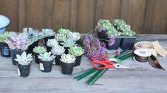Materials for making a succulent wedding bouquet.
