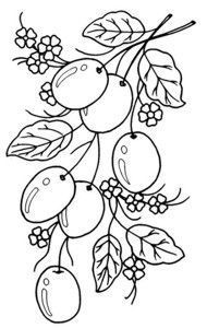 Lots of beautiful fruits here Hand Embroidery Patterns, Applique Patterns, Vintage Embroidery, Craft Patterns, Ribbon Embroidery, Cross Stitch Embroidery, Embroidery Designs, Colouring Pages, Coloring Books