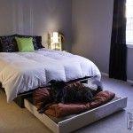 DIY Trundle Dog Bed