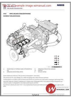 Flexifoil ion 5 manual