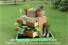 10 DIY Ideas For Gardening With Upcycled Objects!   1 Million Women