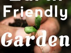10 Sustainable Garden Products for a More Earth-Friendly Garden