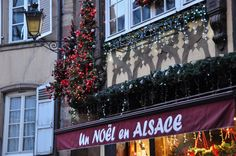 Christmas in Alsace: discover the  Chistmas Markets of Strasbourg  #christmas  #france  #alsace