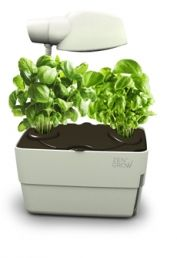 Double Pot Grower with lamp. by ZenGrow Container Gardening, Home And Garden, Herbs, Green, House Gardens, Tabletop, Balcony, Lamps, Decor Ideas