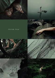 "100 aesthetic summer challenge "" Peter Pan for "" Peter Pan Kunst, Peter Pan Art, Peter Pan Movie, Peter Pan Wallpaper, Peter Pan 2003, Robbie Kay Peter Pan, Desenho Peter Pan, Lost Boys Peter Pan, Peter Pan Quotes"