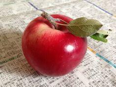 The name of this apple is Akane.  ... Komoro, Nagano, Japan