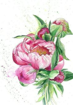 Check out this item in my Etsy shop https://www.etsy.com/listing/500334669/peonies-original-watercolor-download
