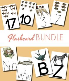 Flashcard Bundle of all ABC and Counting Flashcards
