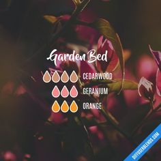 Garden Bed - Essential Oil Diffuser Blend