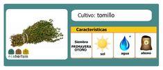 Infaltable el tomillo en tu huerto en casa:  http://ecohortum.com/como-cultivar-tomillo/