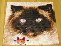 oh wow!  I want to do something like this, I saw the perler portrait site the other night for converting images a bit like this