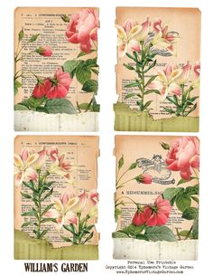 Ephemera's Vintage Garden: Free Printable - Shakespeare Ephemera Cards - For Personal Use Only