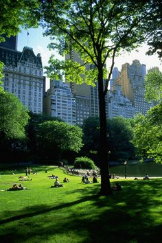 Central Park in the summer | Wallpapersat, July 2013