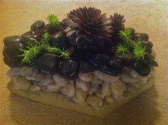 Handmade pebble container with succulents