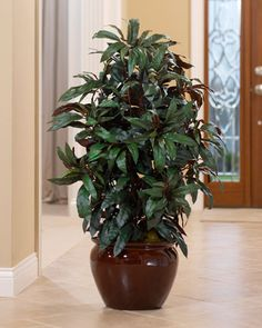 Decorate with Designer Quality Silk & Artificial Floor Plants at Petals Office Scapes Direct Artificial Floor Plants, Artificial Flower Arrangements, Artificial Flowers, Silk Plants, Faux Plants, Pots, Plant Lighting, Plant Decor, Indoor Plants