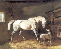 White Stallion and Greyhound by Dreaux