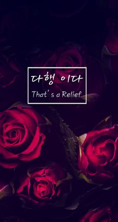 That's a Relief  (다행 이다) Cute Korean Words, Korean Phrases, Korean Quotes, Korean Words Learning, Korean Language Learning, Iphone Wallpaper Korean, Korean Letters, Korean English, Learn Hangul