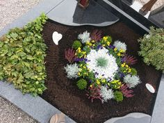 Grabgestaltung gestalten grabbepflanzung How To Choose The Right Faucet Today's faucets do more than Grave Decorations, Garden Types, Wooden Planters, Heuchera, Ornamental Plants, Small Trees, Day Lilies, Types Of Plants, Winter Garden
